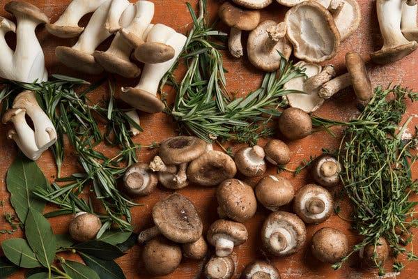 Buy Mushrooms Canada